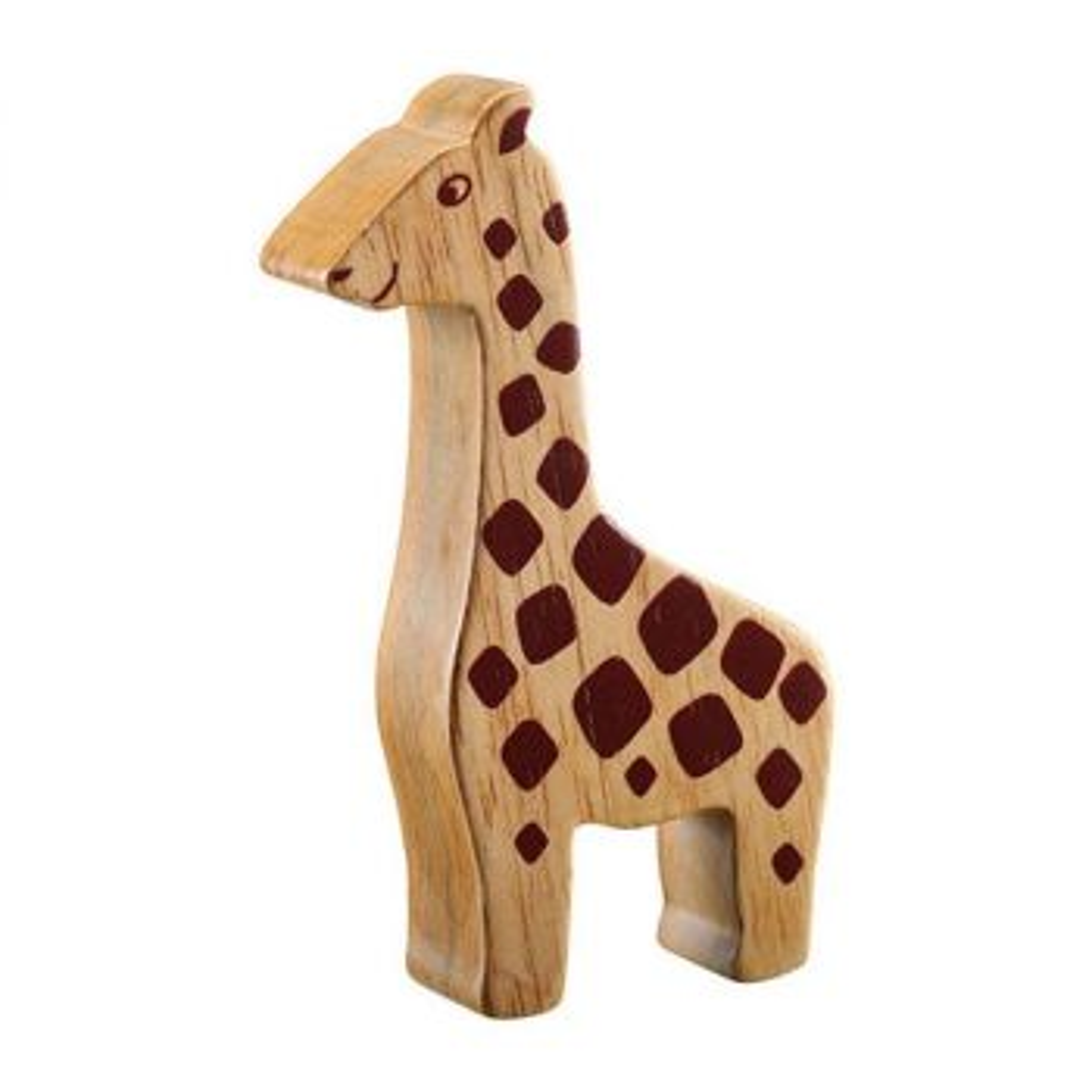 Lanka Kade Giraffe Natur